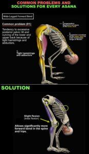 Standing-forward-bend-solution