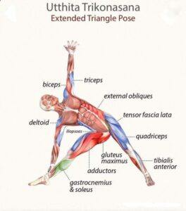 Triange-benefits