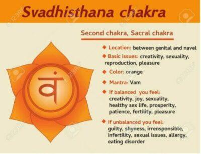 chakra-2nd-info2